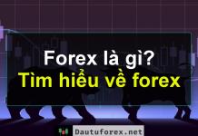 ngoại hối forex là gì ? tìm hiểu về thị trường ngoại hối forex