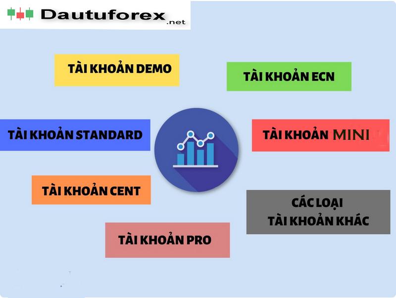 Các loại tài khoản forex giao dịch phổ biến trên thị trường